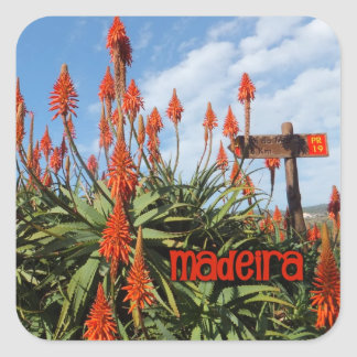 Madeira Aloe stickers