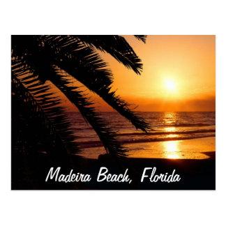 Madeira Beach Florida Postcard