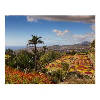 Madeira - Botanical garden of Funchal postcard