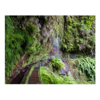 Madeira - Levada do Rei postcard