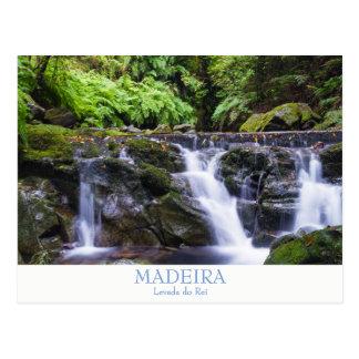 Madeira - Levada do Rei postcard with text
