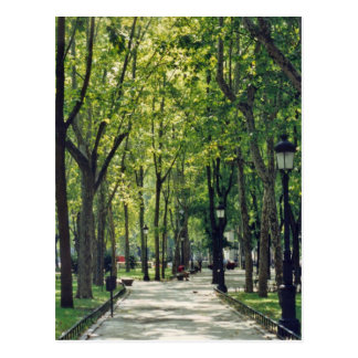 Madrid Park Postcard