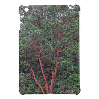 Madrona tree iPad mini covers