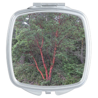 Madrona tree mirror for makeup