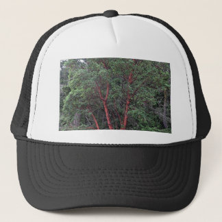 Madrona tree trucker hat