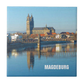 Magdeburg Cathedral with river Elbe 01.2.T Tile