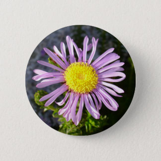 Magenta Aster - A Star of Love and Fidelity 6 Cm Round Badge