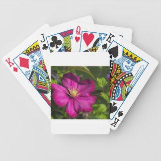 Magenta Clematis Blossom Poker Deck