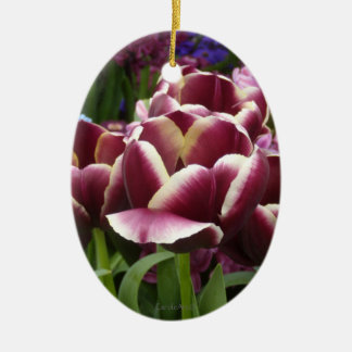 Magenta Cream Tulips Ceramic Oval Decoration