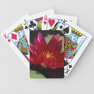Magenta Lotus Waterlily Bicycle Playing Cards