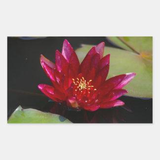 Magenta Lotus Waterlily Rectangular Sticker