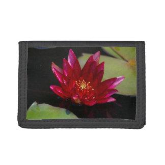Magenta Lotus Waterlily Trifold Wallets