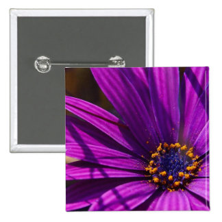 Magenta The African Daisy Button