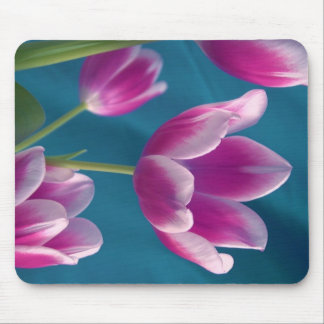 magenta tulips mousepad