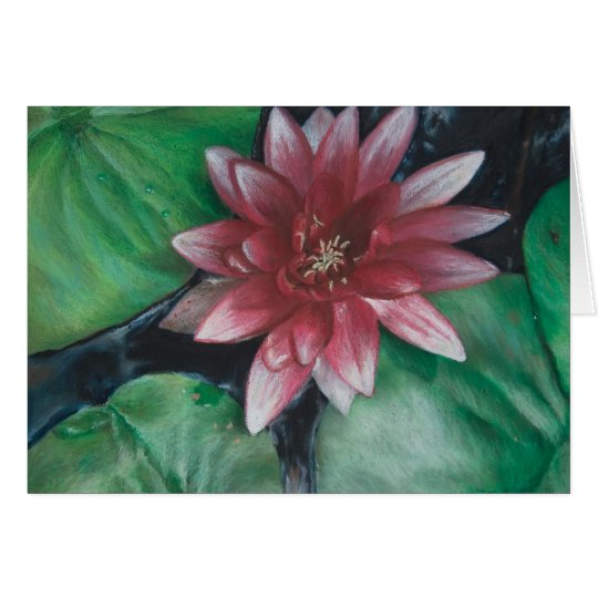 Magenta water lily card