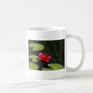Magenta Waterlily Mug