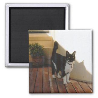 Magic Cat - Customized Square Magnet