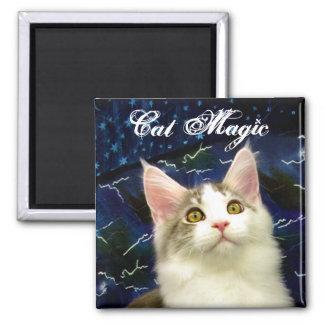 Magic Cat Halloween magnet