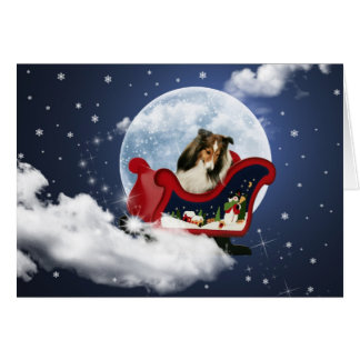 Magic Christmas Sheltie Card