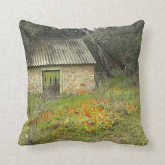 Magic countryside cottage Pillow