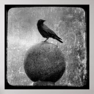 Magic Crow Poster