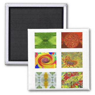 Magic Flovers Square Magnet
