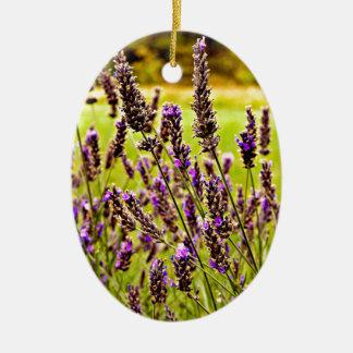 Magic Lavender Ceramic Oval Decoration