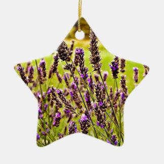 Magic Lavender Ceramic Star Decoration