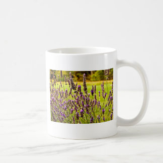 Magic Lavender Coffee Mug