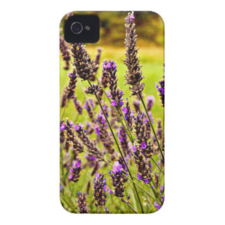 Magic Lavender iPhone 4 Case