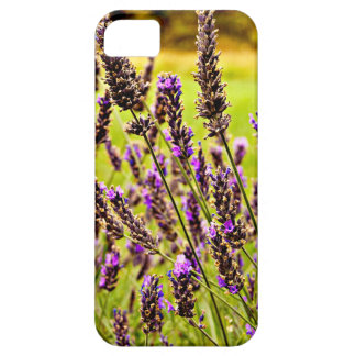 Magic Lavender iPhone 5 Cases