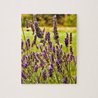 Magic Lavender Jigsaw Puzzle