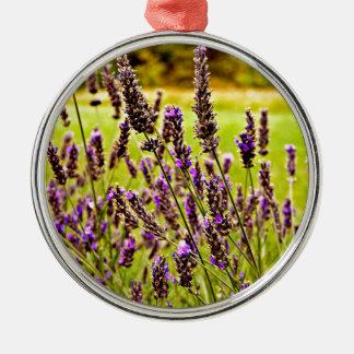 Magic Lavender Silver-Colored Round Decoration