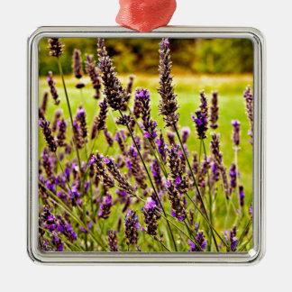 Magic Lavender Silver-Colored Square Decoration