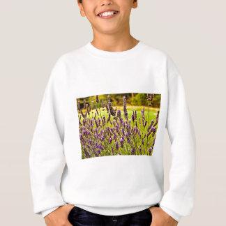 Magic Lavender Sweatshirt