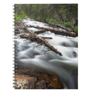 Magic Mountain Stream Spiral Notebook
