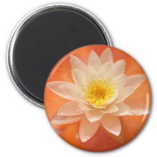 magic nature2 6 cm round magnet