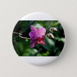 Magic orchid 6 cm round badge