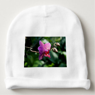 Magic orchid baby beanie
