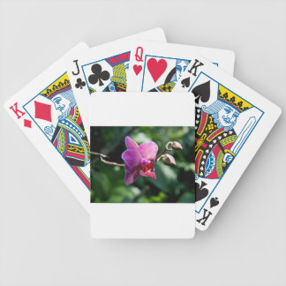 Magic orchid bicycle playing cards
