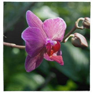 Magic orchid napkin