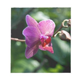 Magic orchid notepad