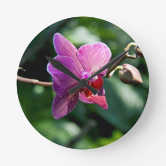 Magic orchid round clock