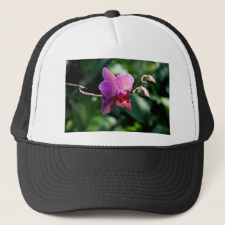 Magic orchid trucker hat