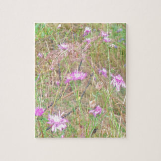Magical beauty of meadow puzzles