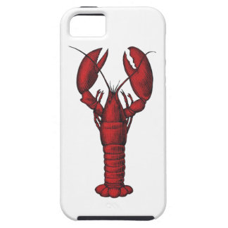 Magical Feast iPhone 5 Cover