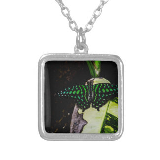 Magical Green Spotted Butterfly Necklaces