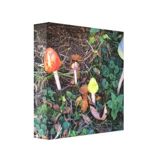 Magical Mushroom Garden Photographic Canvas Print