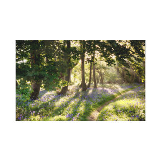 Magical path through bluebell forest canvas print