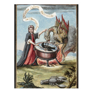 Magician and Dragon at the Cauldron of Alchemy Postcard
